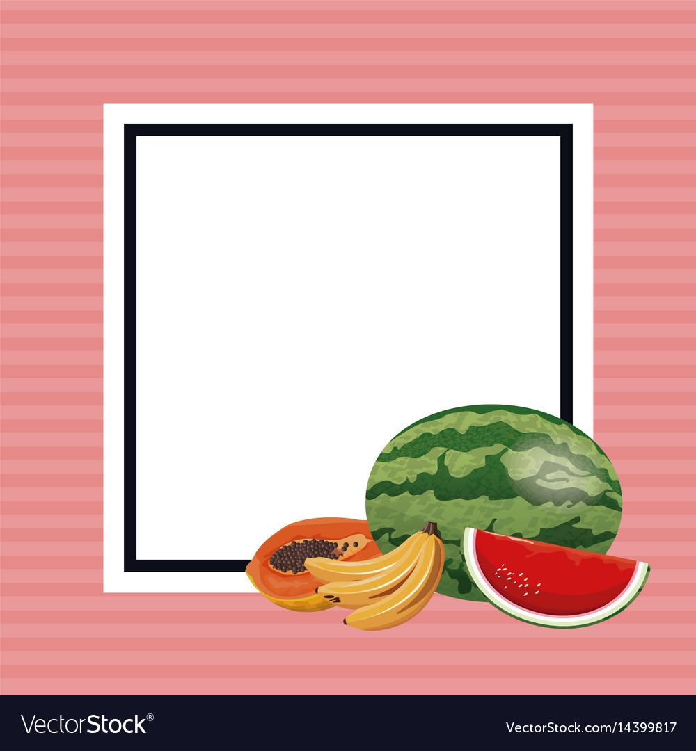 Hello summer fresh fruit poster