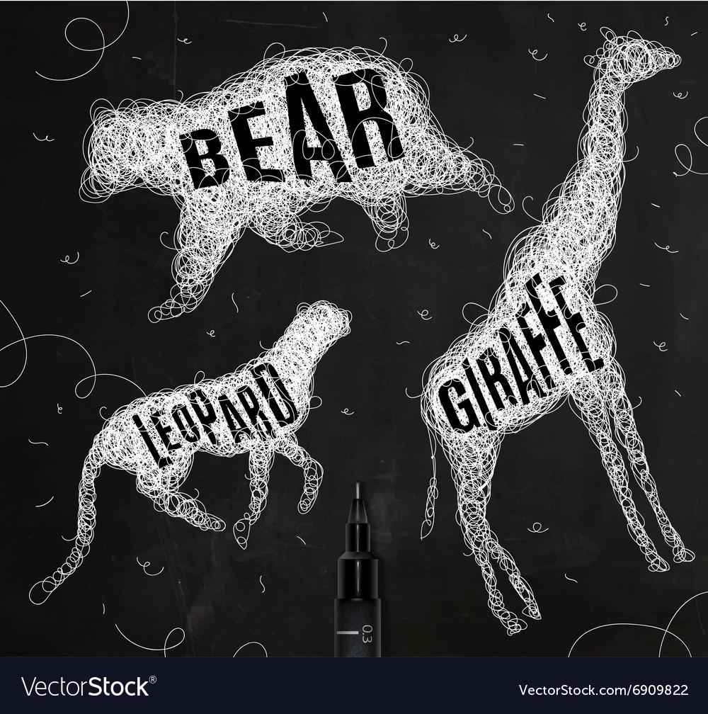 Tangled line bear