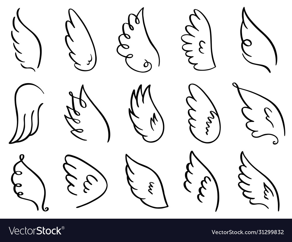 Doodle wings hand drawn angel flight feather