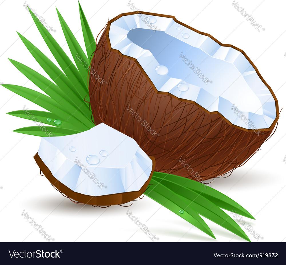 Half a coconut