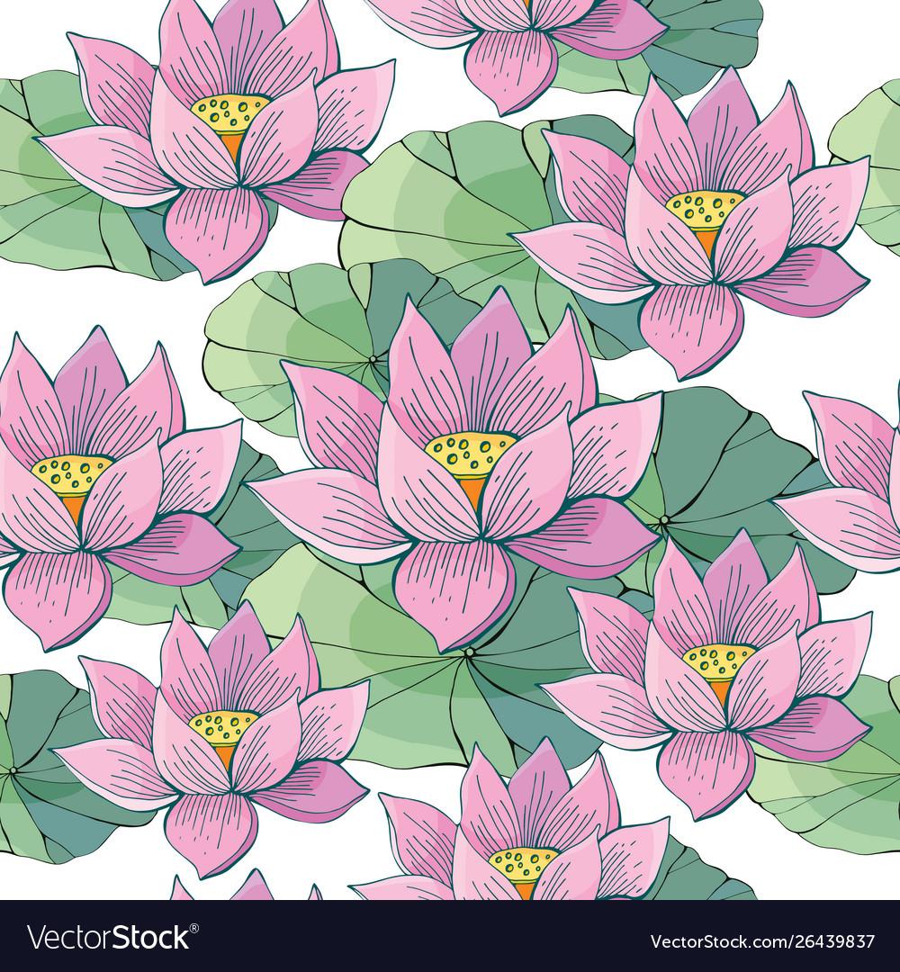 Seamless background pink lotus water beautiful