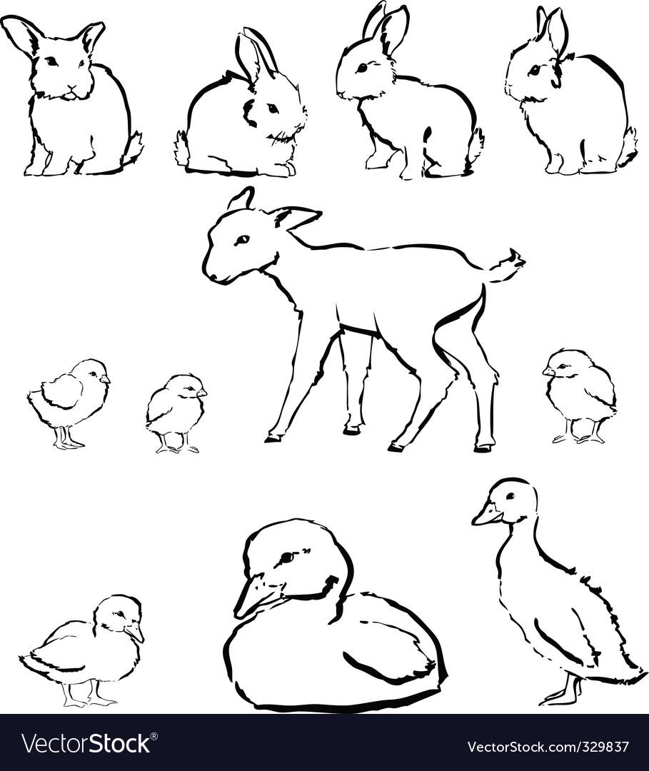Spring baby animals vector image