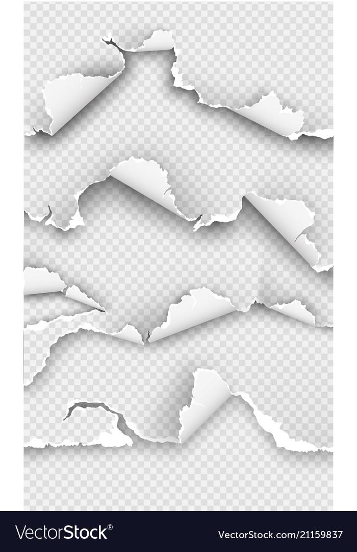 Transparent design ripped templates torn paper