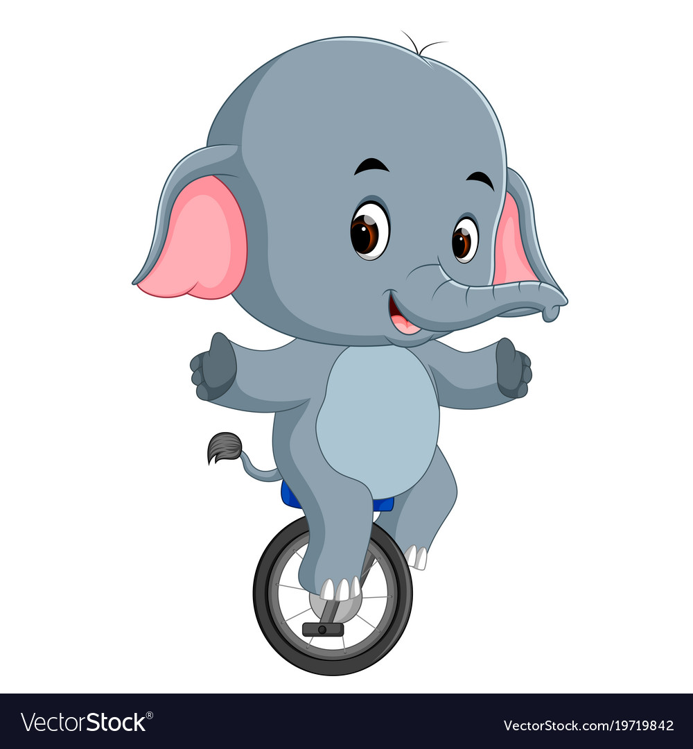 Cute elephant riding a unicycle