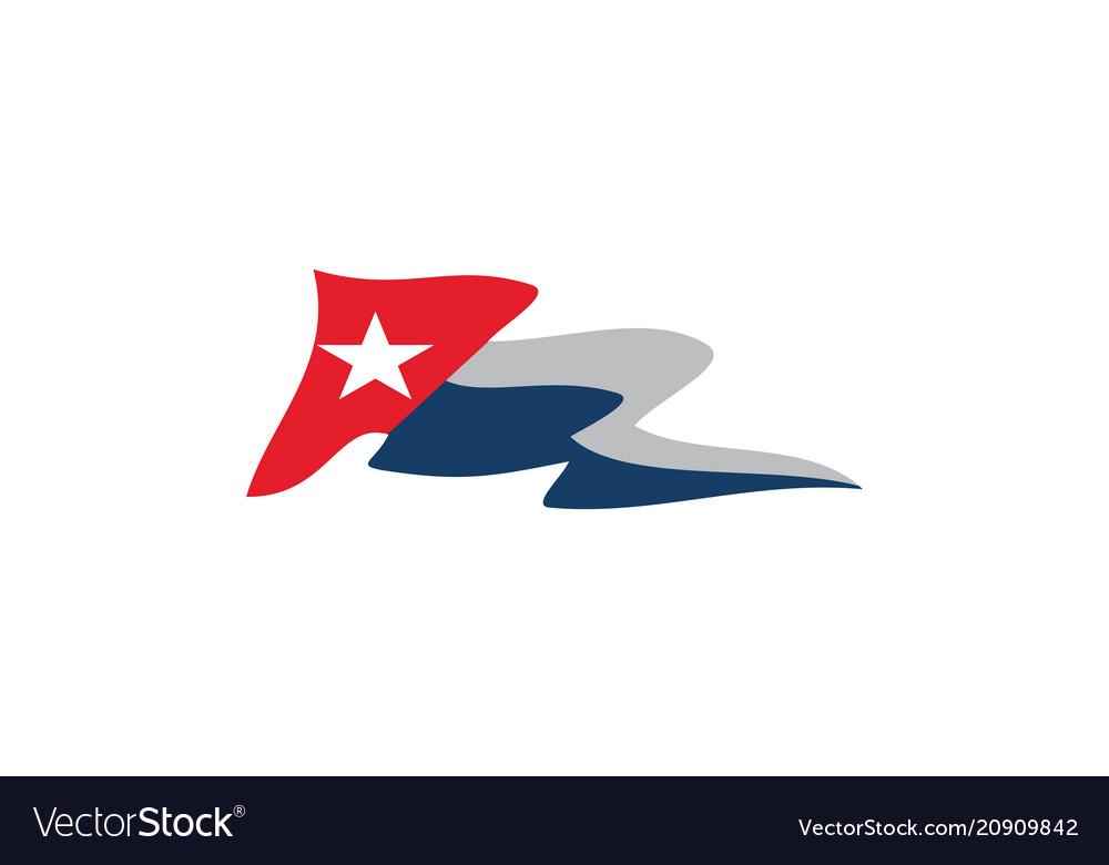 Flag texas logo design template vector image