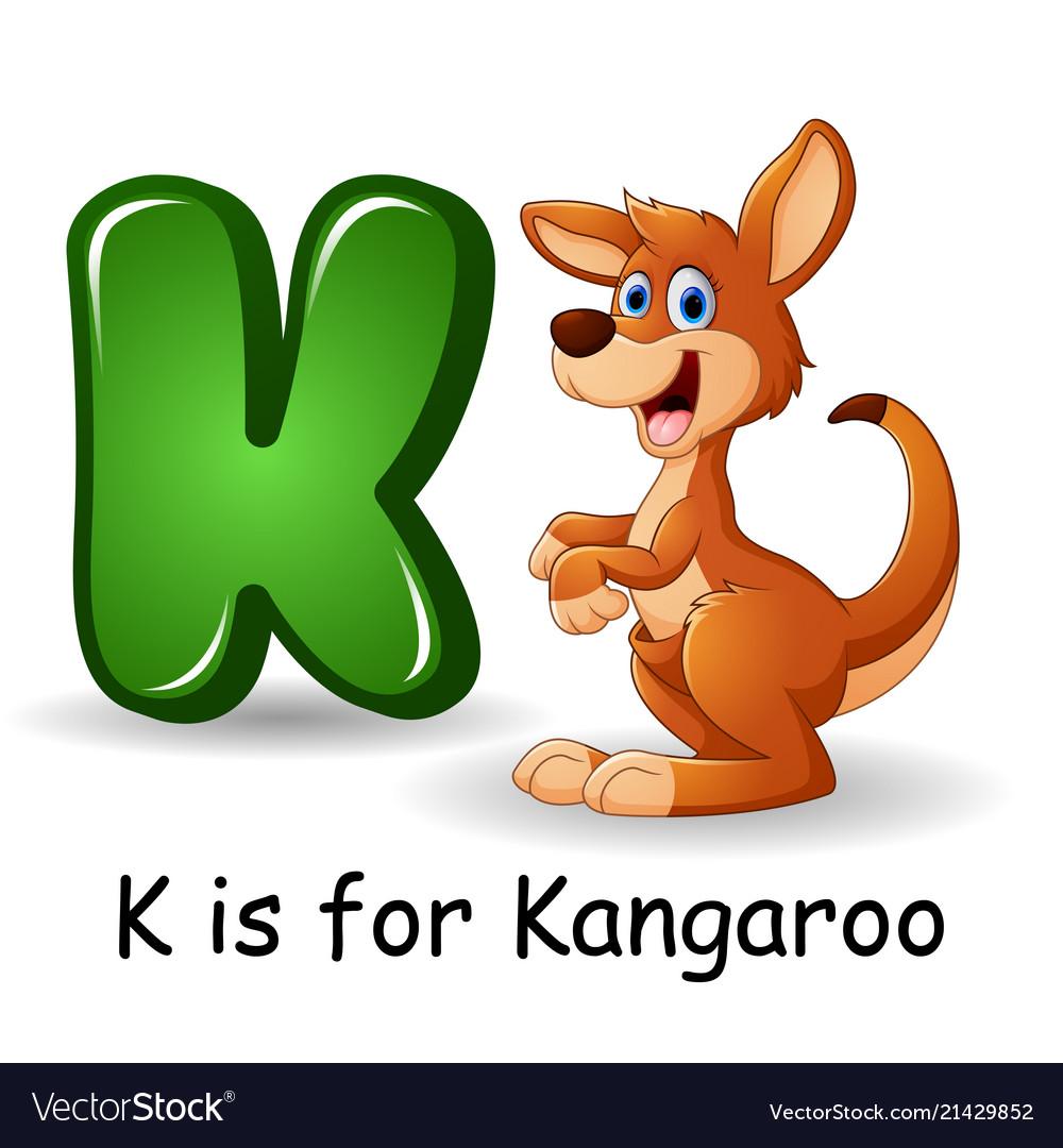 Animals alphabet k is for kangaroo