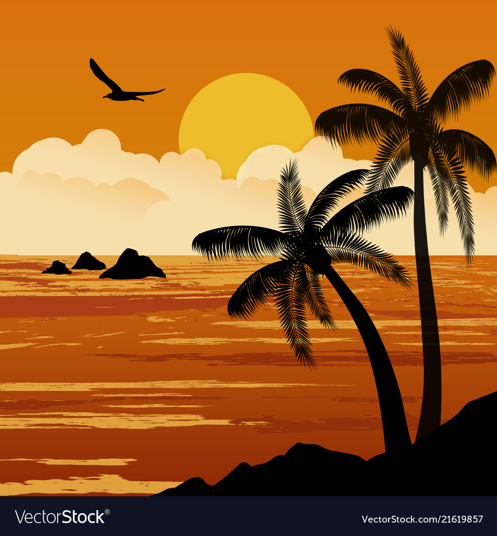 Beautiful tropical sunset with palm trees