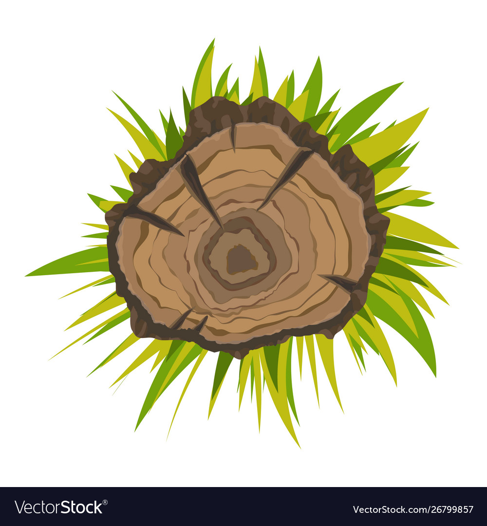 Top View Tree Stump Icon Cartoon Style Royalty Free Vector Green tree illustration, logo tree, cartoon tree logo, cartoon character, free logo design template png. vectorstock
