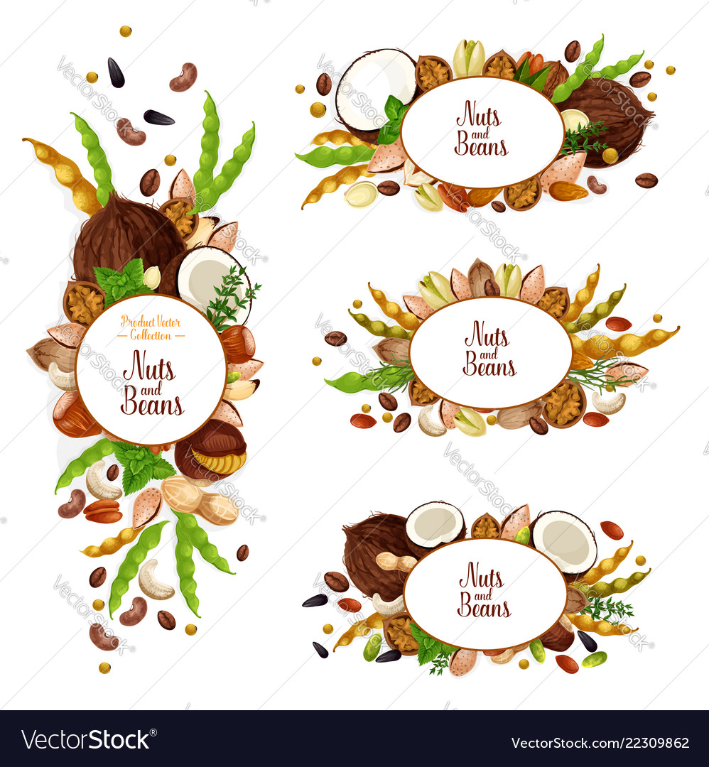 Nuts and beans icons with vegetarian food harvest