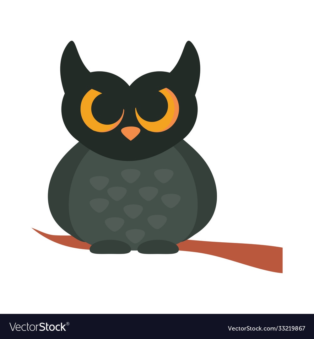 Cartoon owl bird on branch animal flat icon design