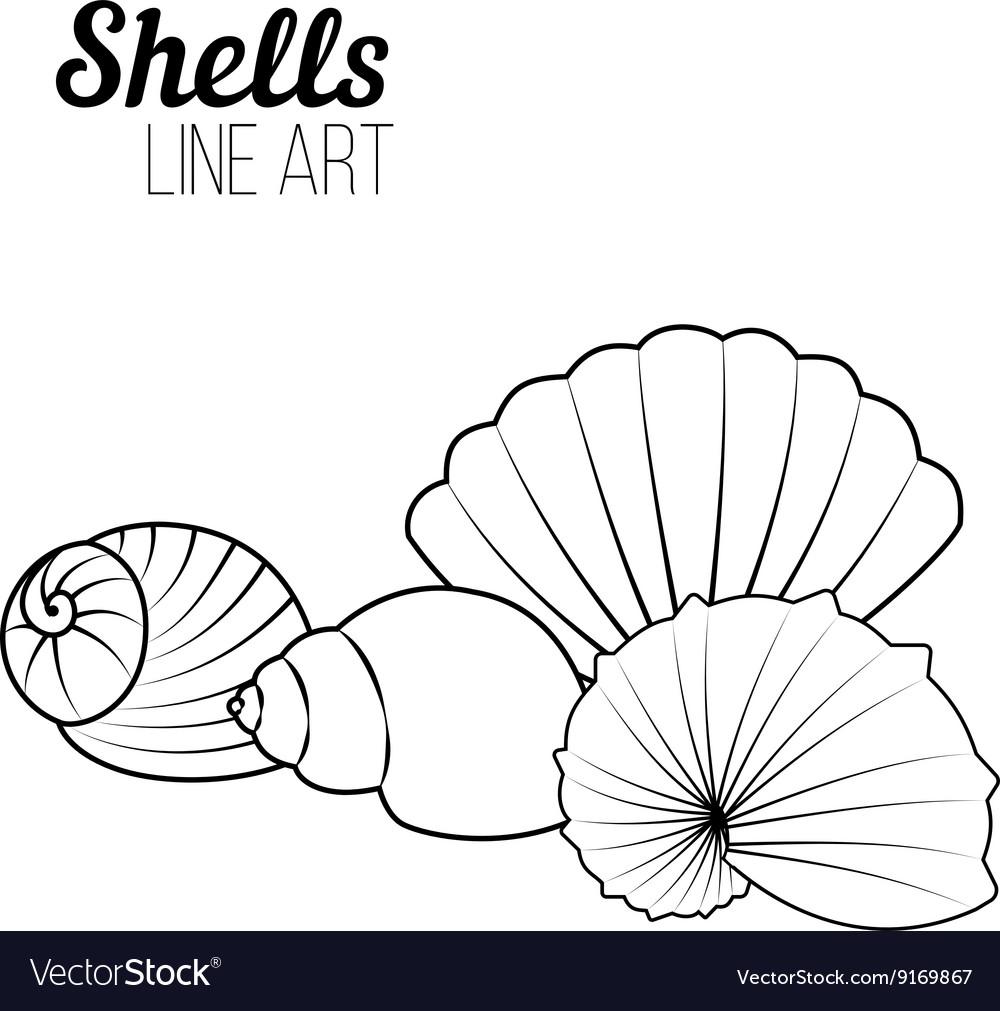 Shells line art