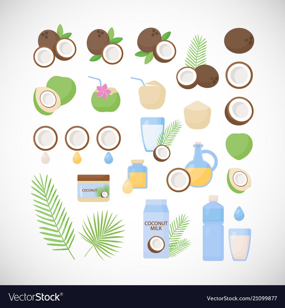 Coconut flat icon set