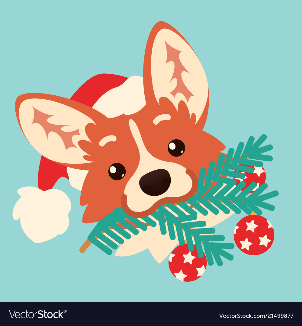Cute corgi dog in santa hat with christmas tree