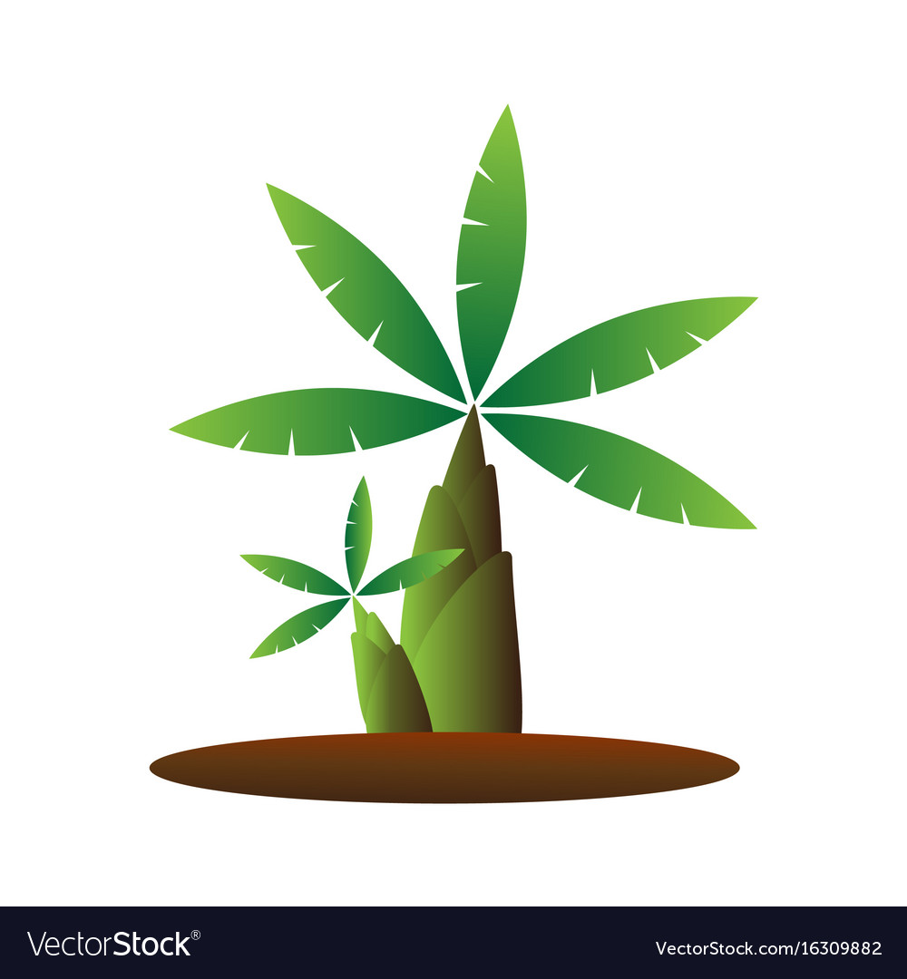 Banana tree cartoon vector image