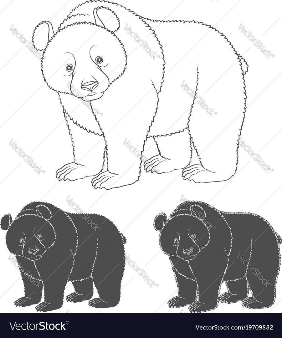 Set of black and white images with a bear