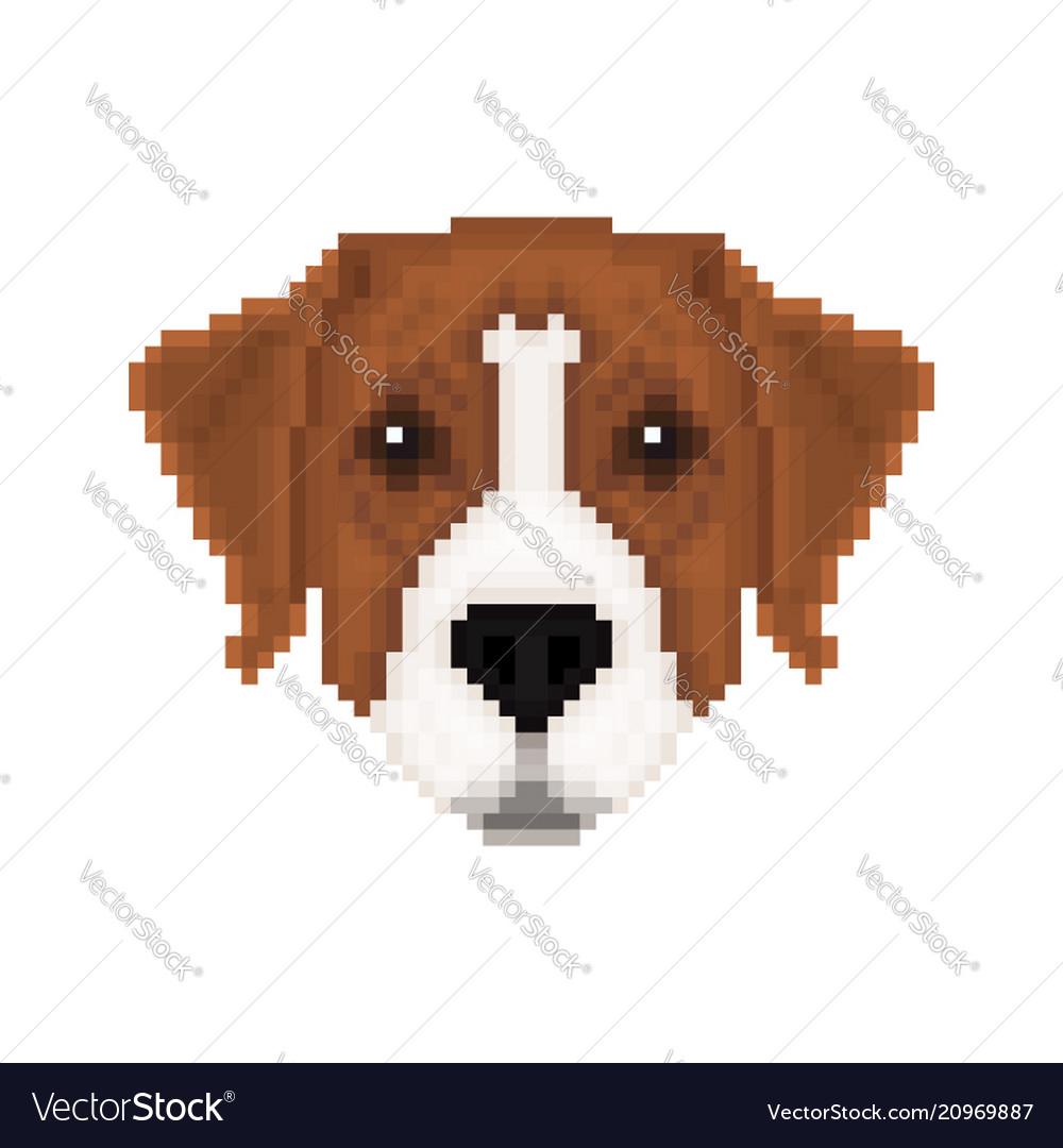 Portrait of a australian pinscher in pixel art