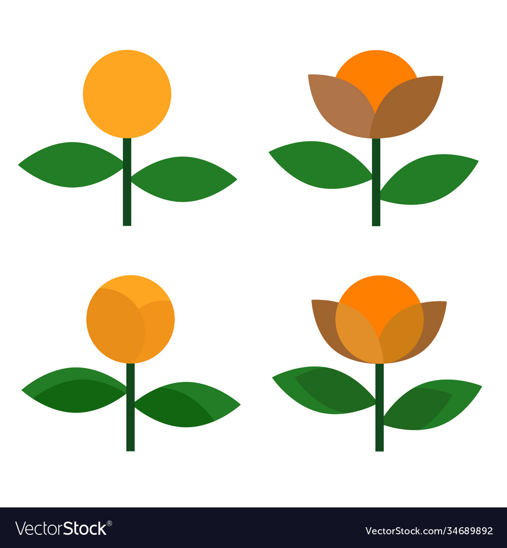 Flower icon design on white background vector