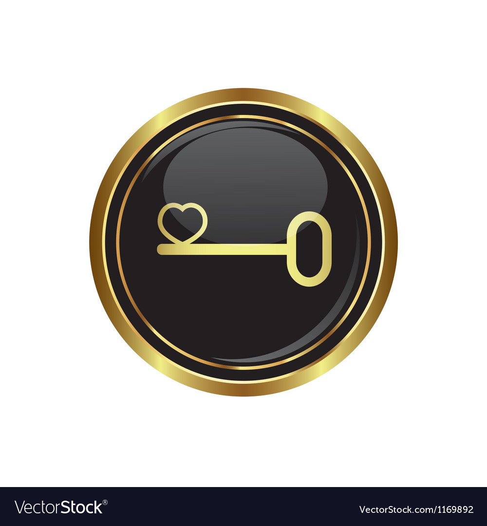 Key icon with heart vector image