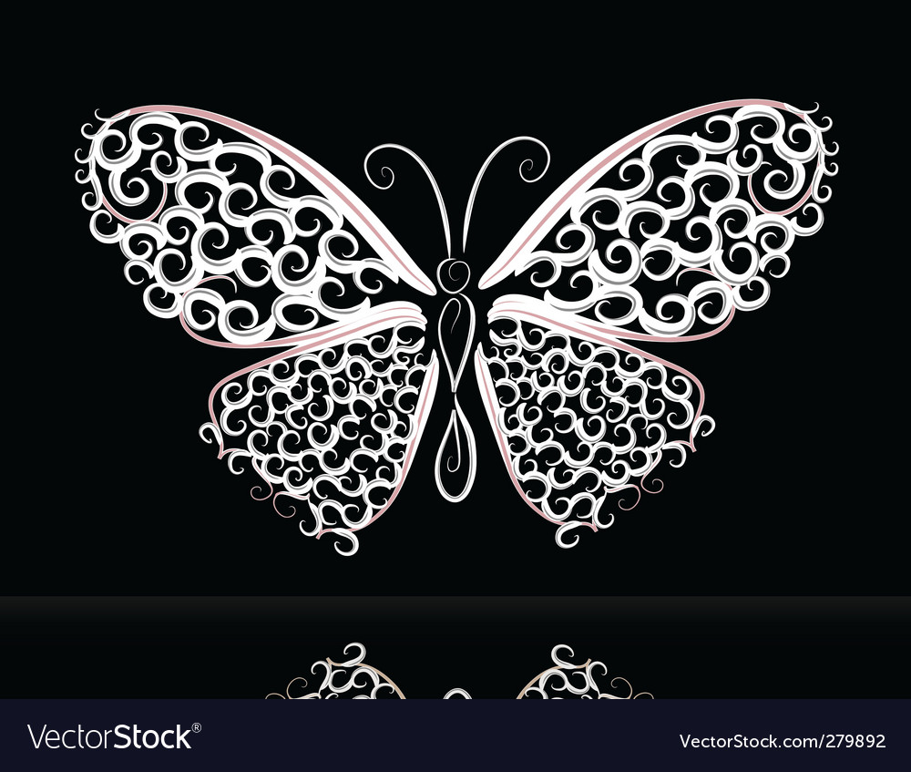 Lace butterfly vector image