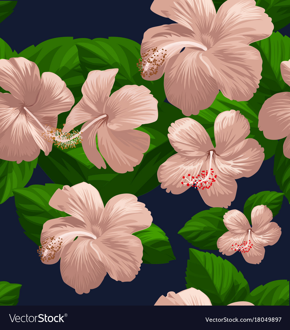 Hibicus flowers pattern 3