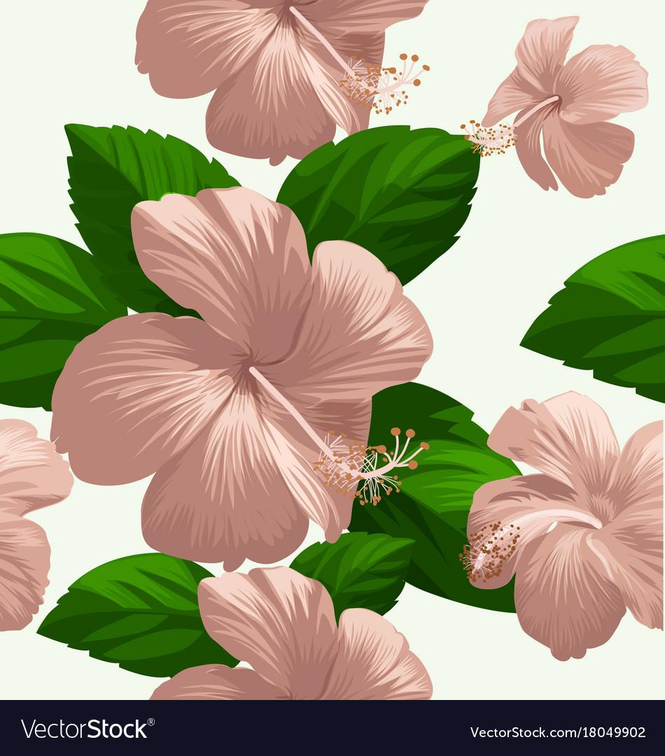 Hibicus flowers pattern 4