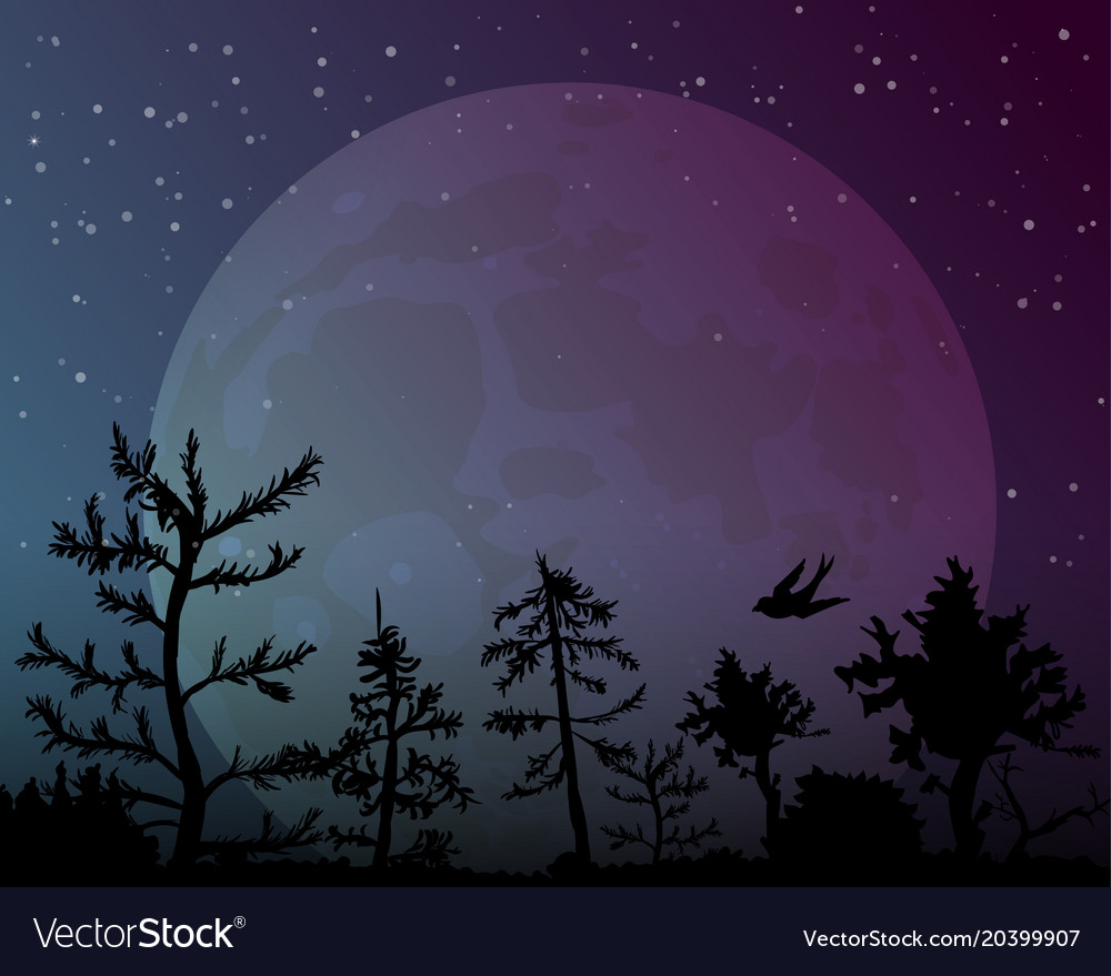 Big moon on night sky background