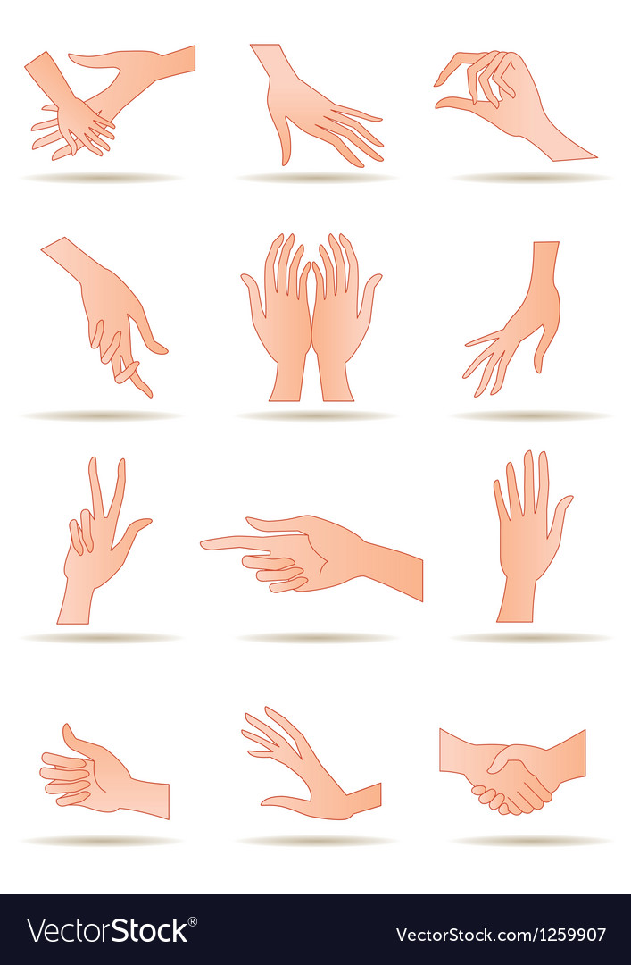 Human hands in different positions