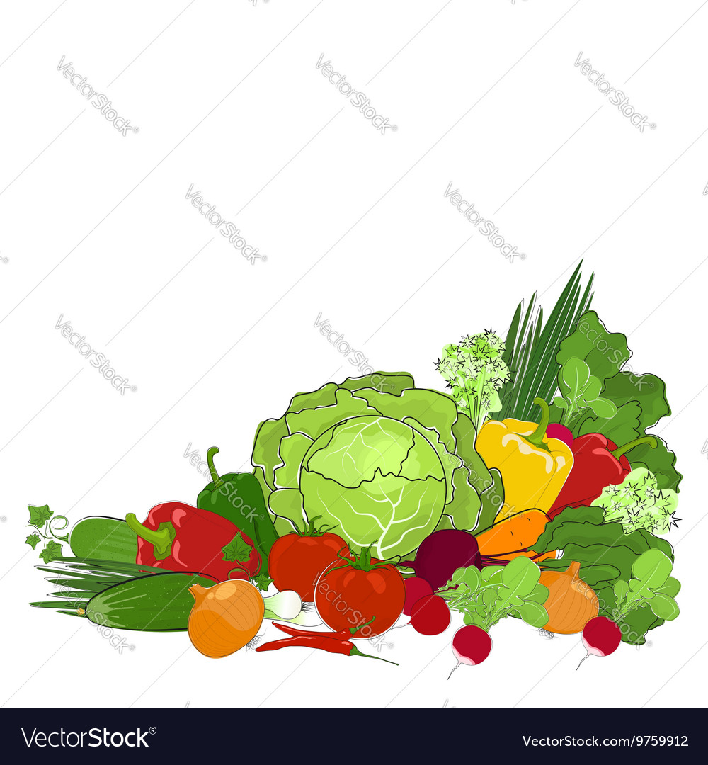 Fresh Raw Vegetables Isolated on White
