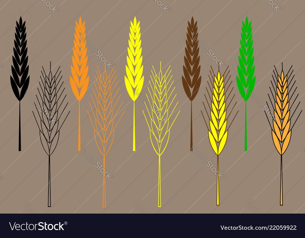 Wheat ear icon set barley ear