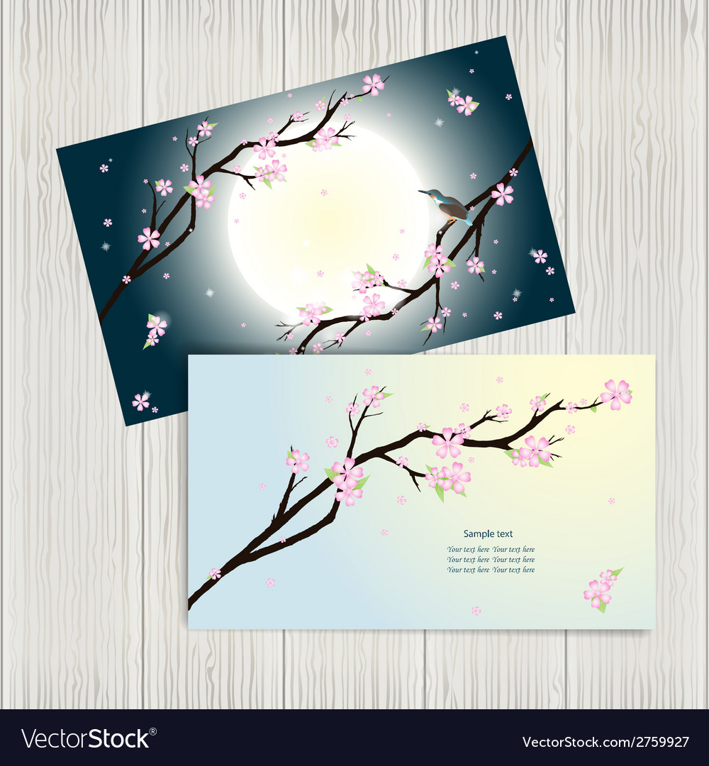Business cards with stylized cherry blossom Vector Image
