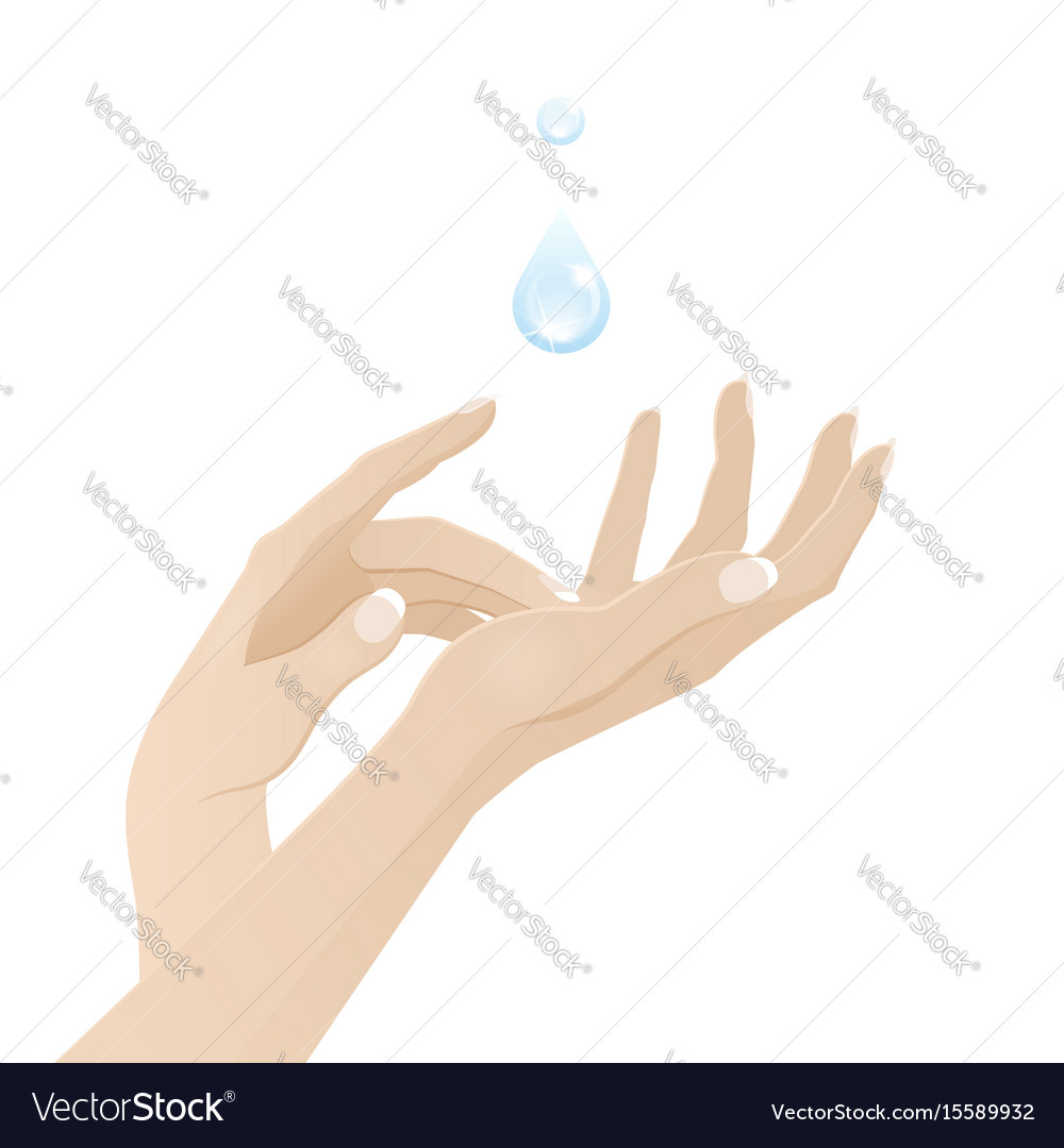 Female hands care and hygiene vector image