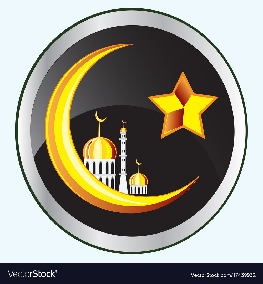 Symbol of the islam on button vector image