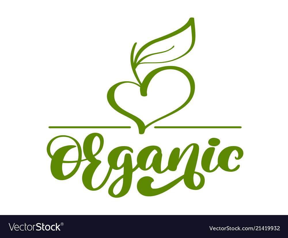 Vegan green organic nature logo template