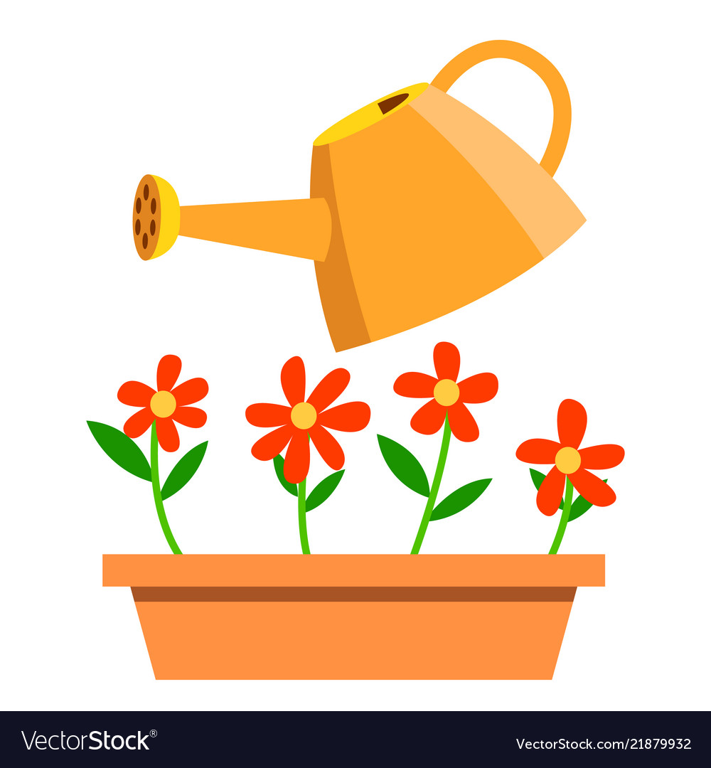 Watering can and flowers isolated cartoon