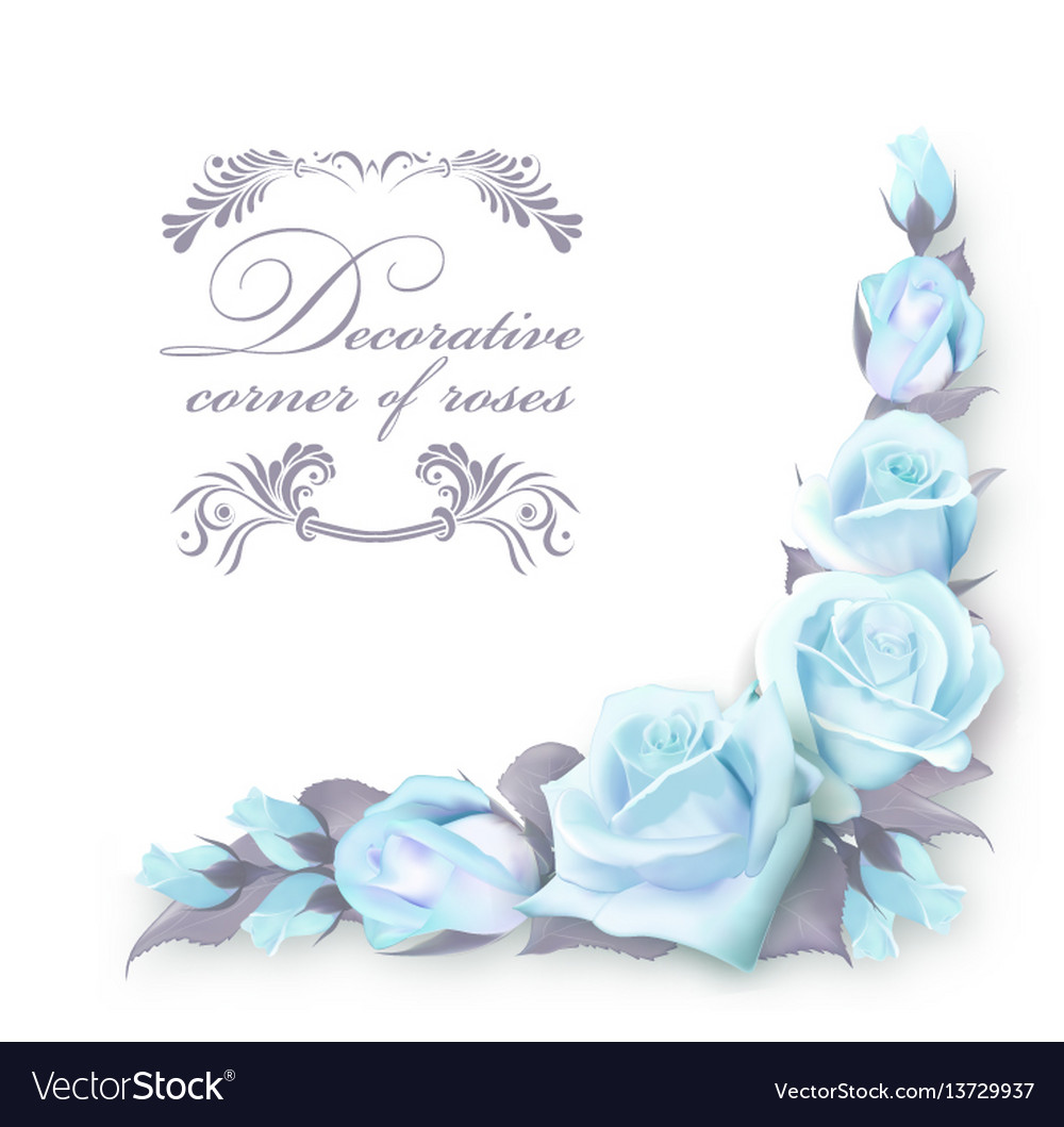 Corner background with blue roses and green