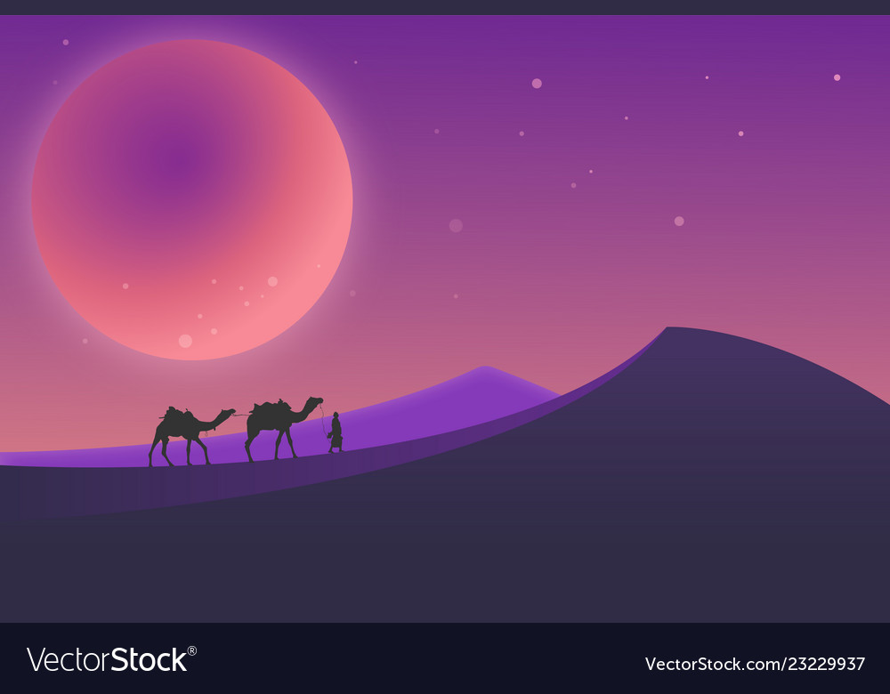 Desert landscape during the night