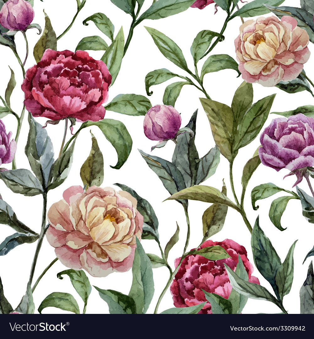Beautiful watercolor pattern with peonies on white