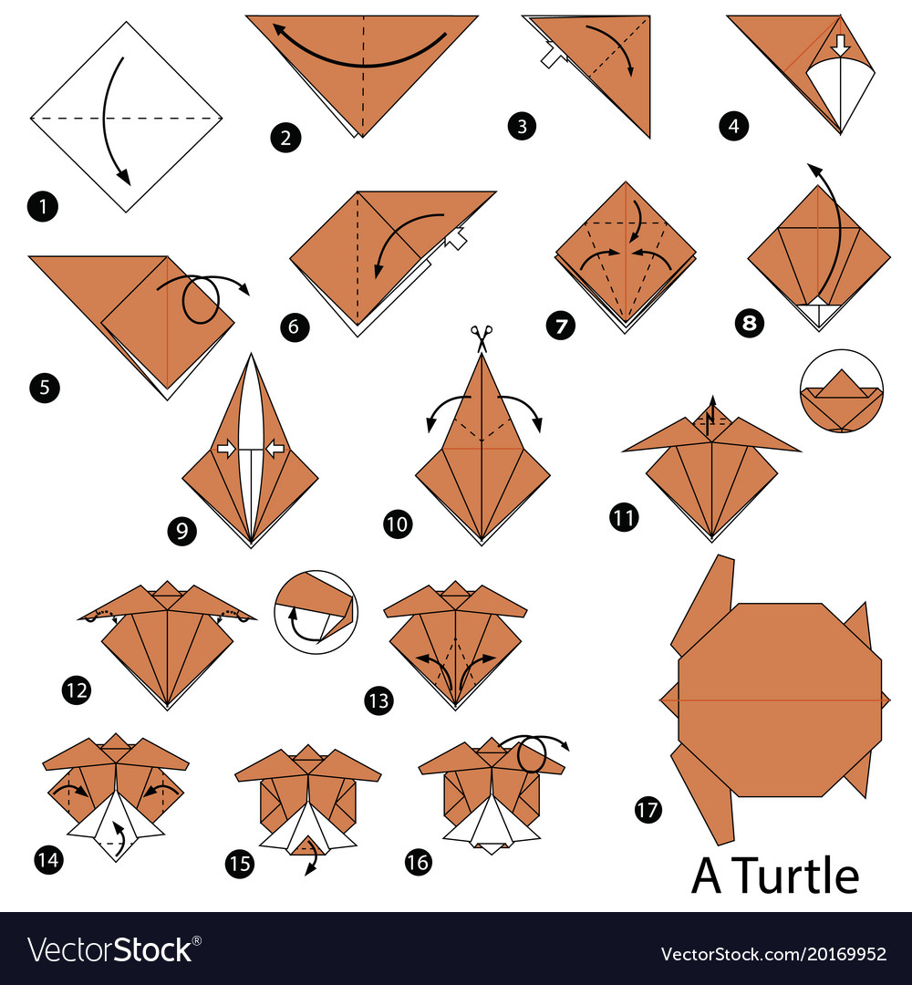Step Instructions How To Make Origami A Turtle Vector Image