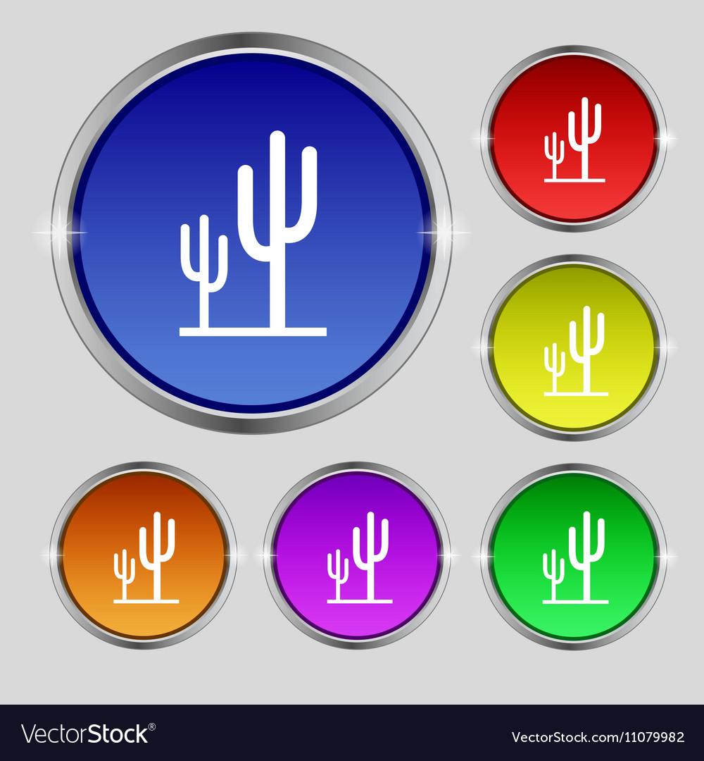 Cactus icon sign Round symbol on bright colourful