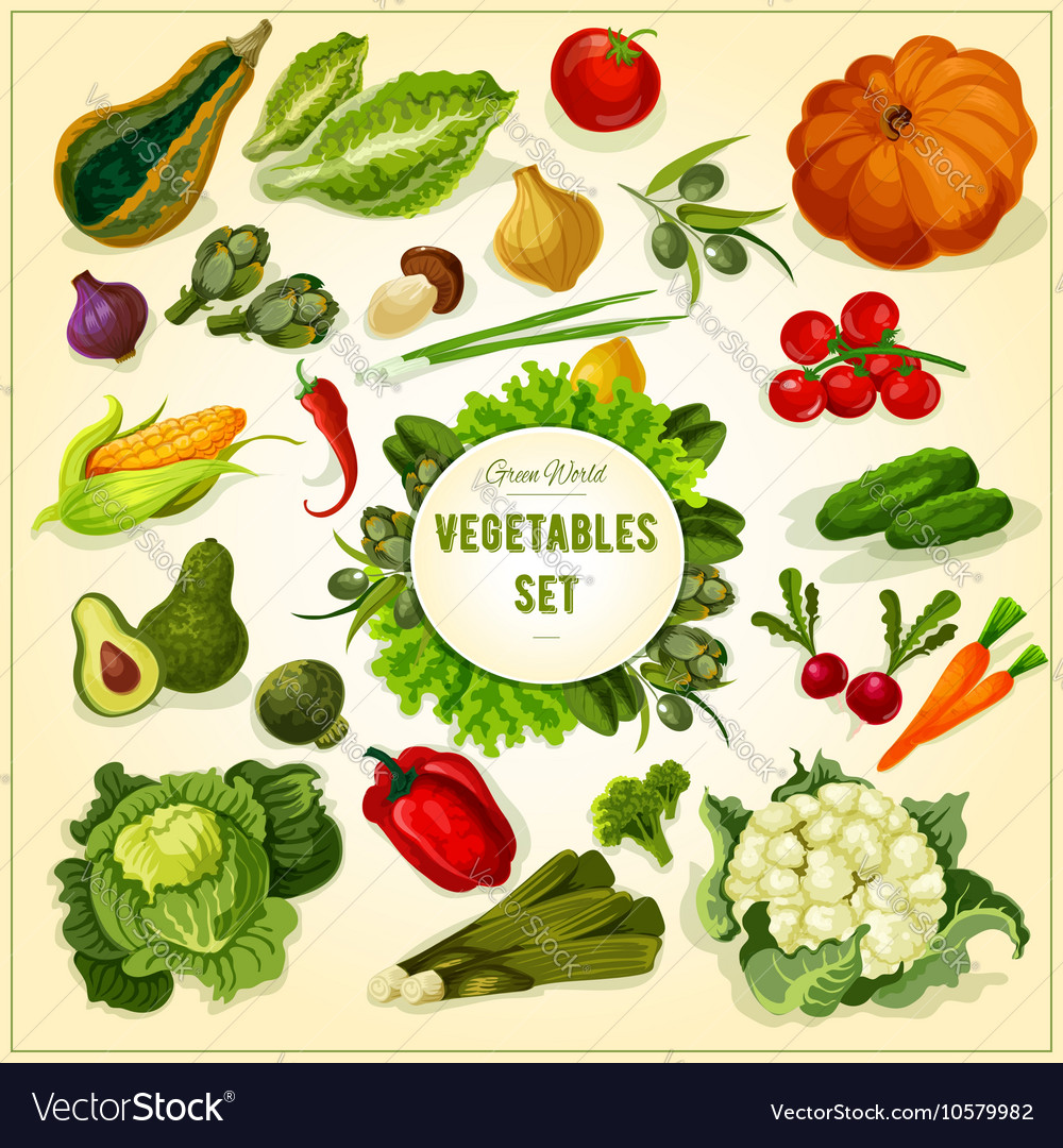 Organic fresh vegetables and herbs poster