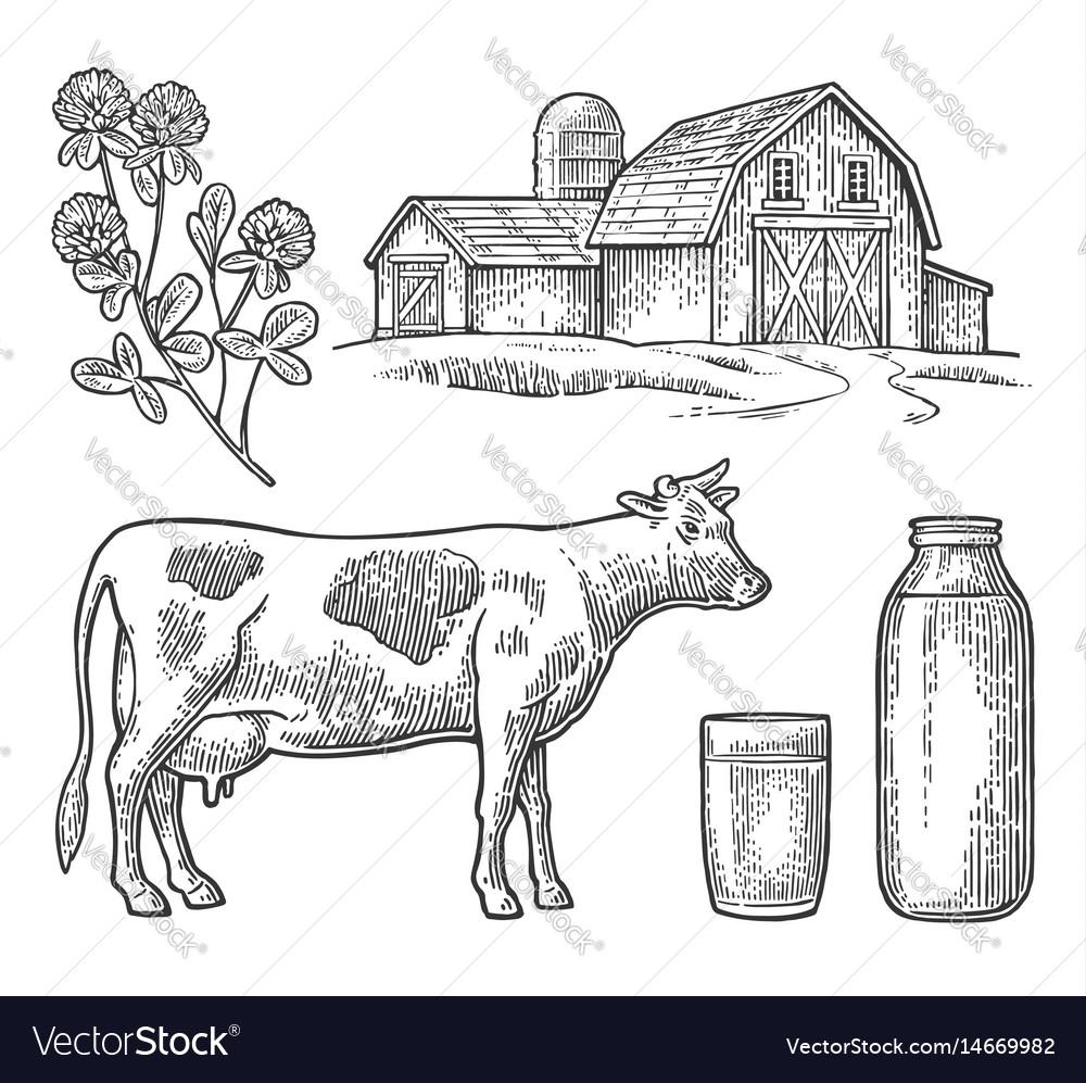 Set milk farm cow head clover glass and bottle