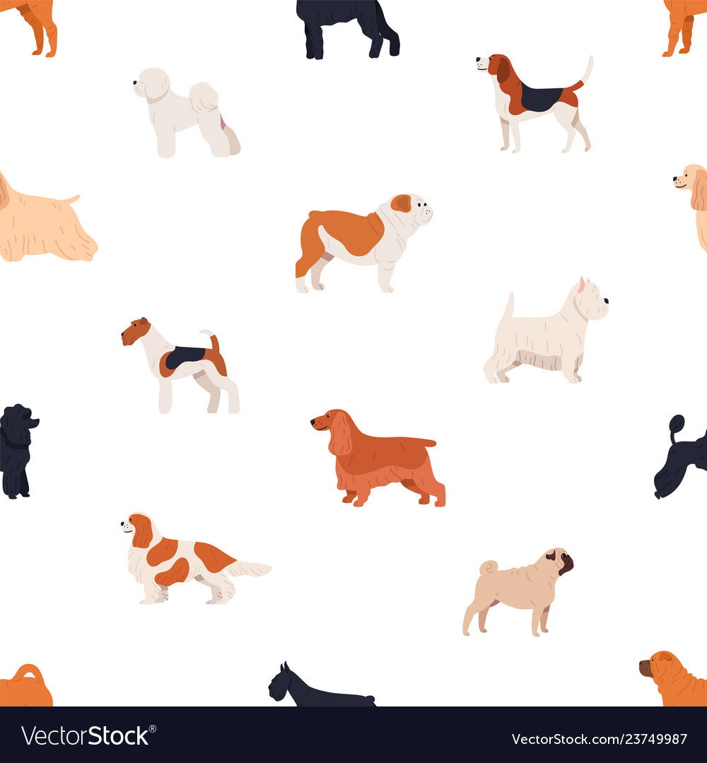 Seamless pattern with dogs of various breeds on