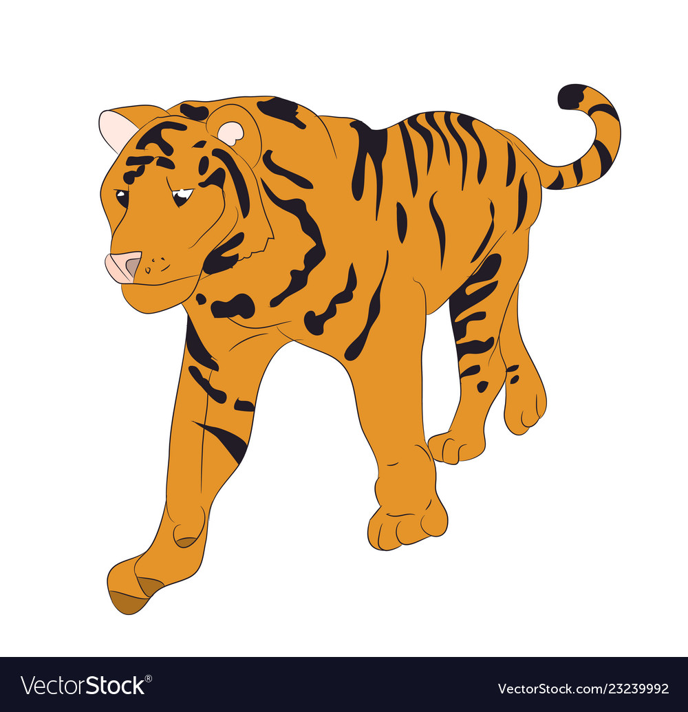 A tiger that stands drawing