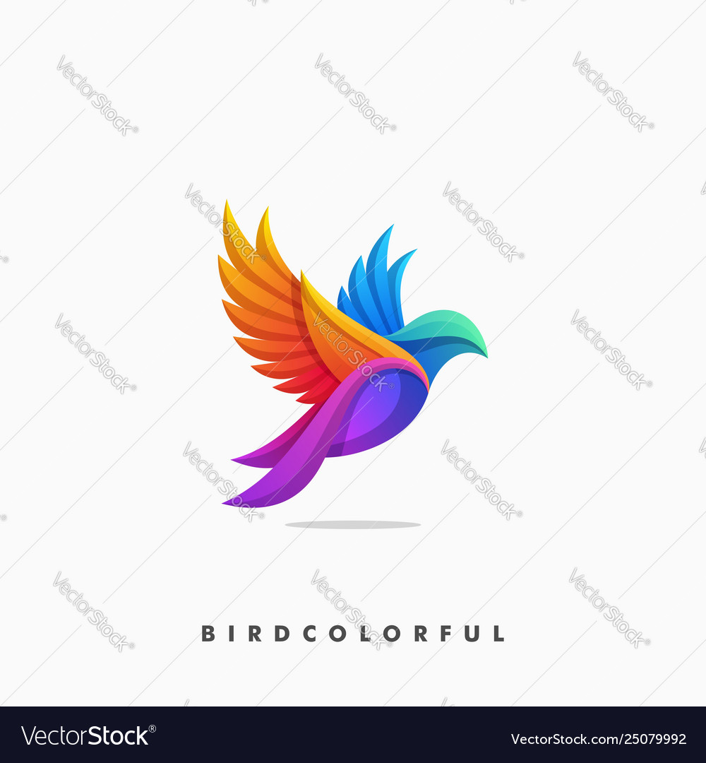 Bird colorful concept design template