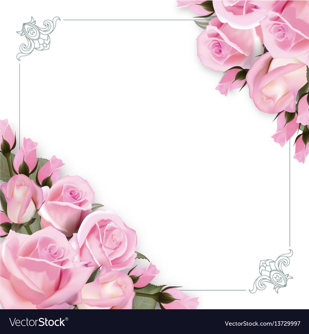 Background With Pink Roses Flowers And Royalty Free Vector