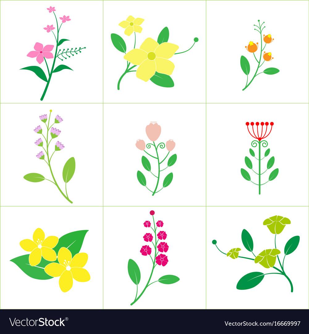 Set of cute flower
