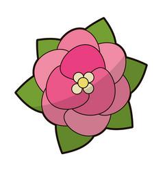 pink flower floral decoration vector image vector image