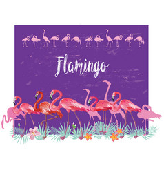 Border with flamingoes and tropical plants vector