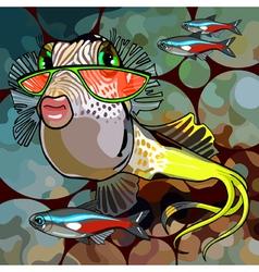 cartoon fish glamor glasses vector image