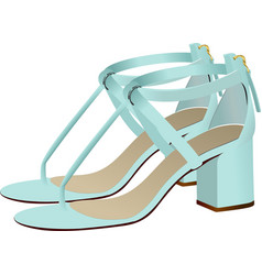 Fashion woman light blue shoes vector